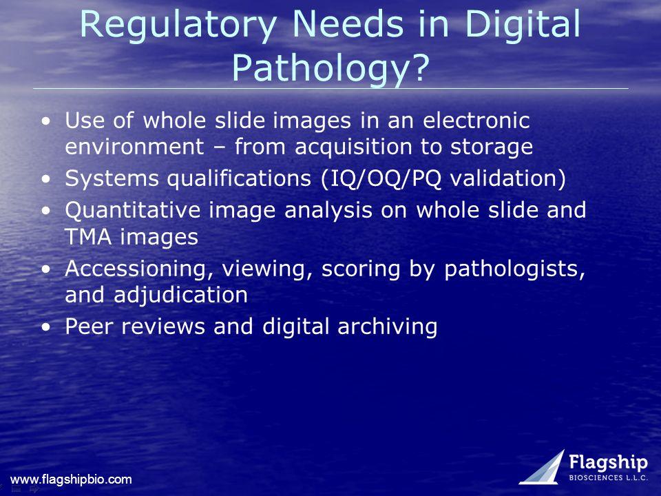 Regulatory Needs in Digital Pathology