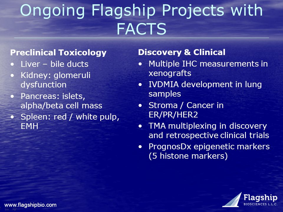 Ongoing Flagship Projects with FACTS