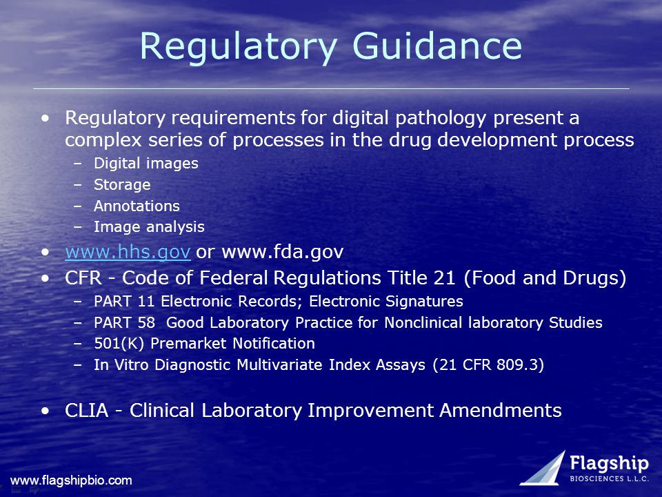 Regulatory Guidance Regulatory requirements for digital pathology present a complex series of processes in the drug development process.
