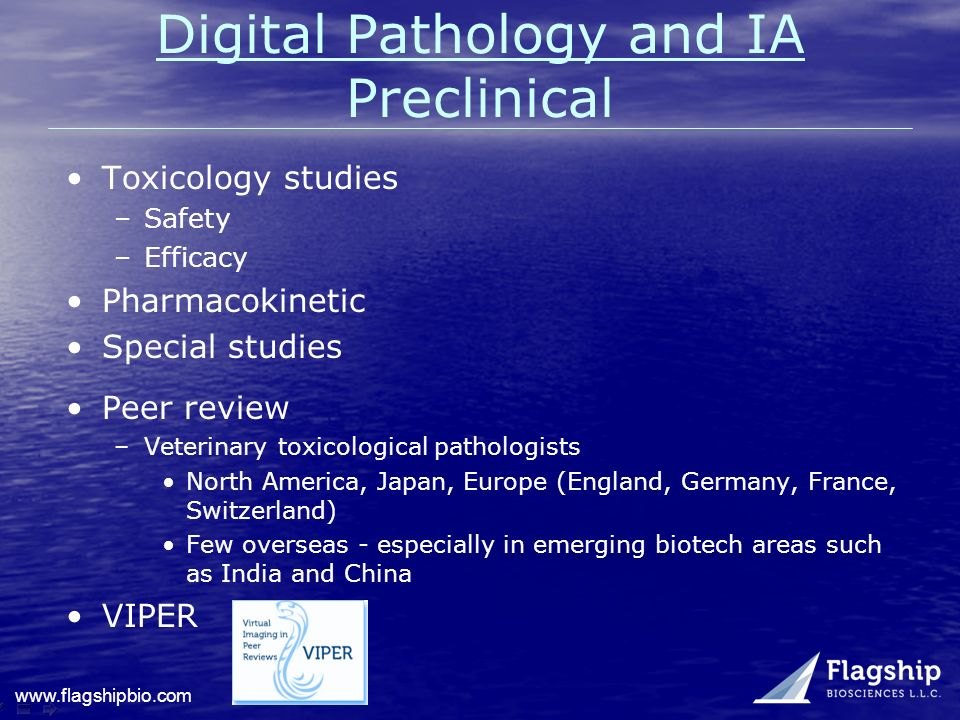 Digital Pathology and IA Preclinical