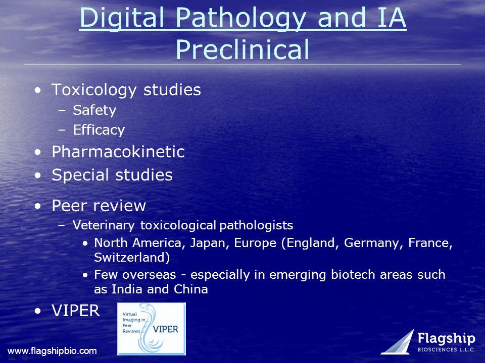 Digital Pathology and IA Preclinical