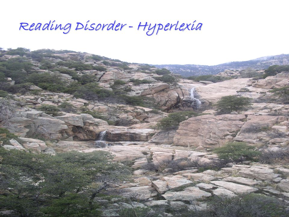 Reading Disorder - Hyperlexia