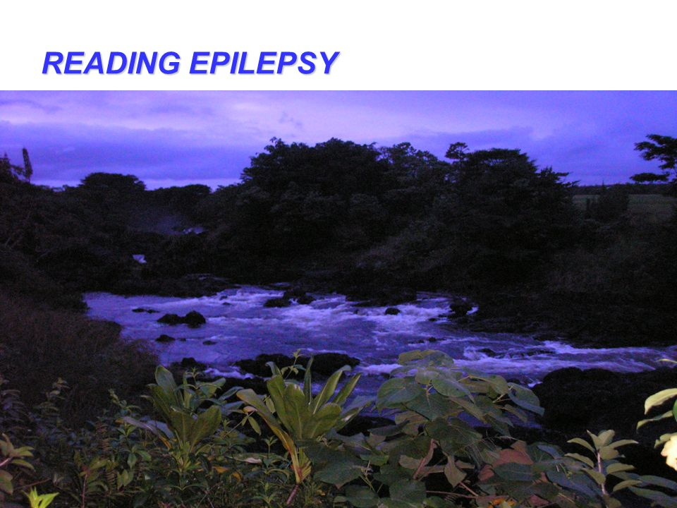 READING EPILEPSY All Rights Reserved Kevin T. Blake, Ph.D., P.L.C.