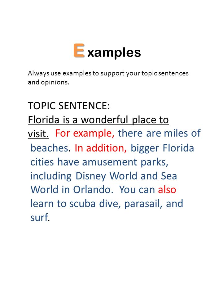 E xamples TOPIC SENTENCE: Florida is a wonderful place to visit.