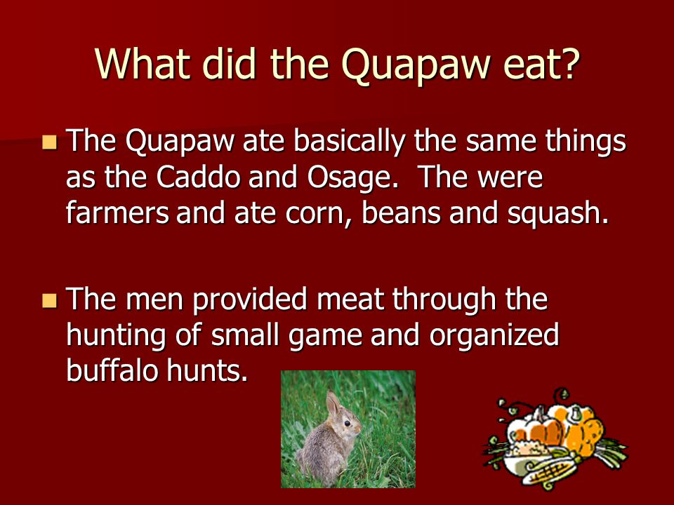What did the Quapaw eat The Quapaw ate basically the same things as the Caddo and Osage. The were farmers and ate corn, beans and squash.