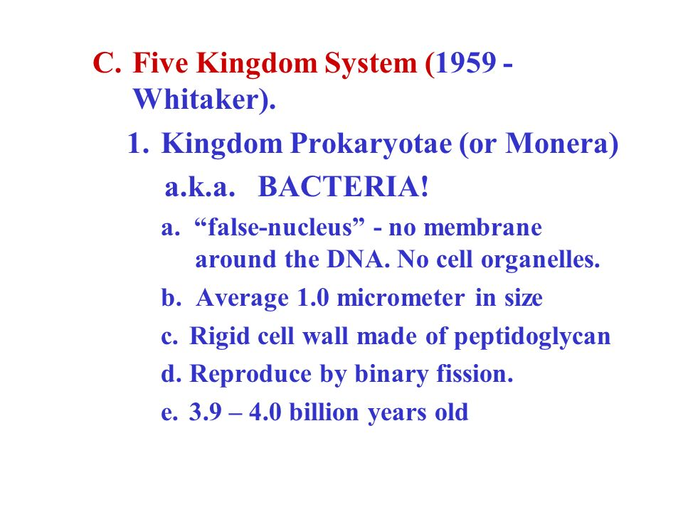 Five Kingdom System (1959 - Whitaker). Kingdom Prokaryotae (or Monera)