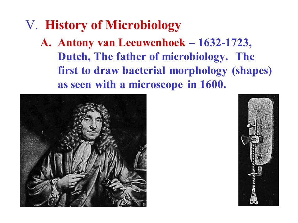 V. History of Microbiology