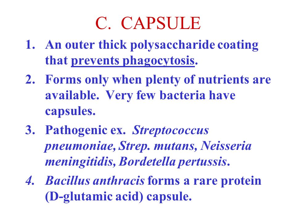C. CAPSULE An outer thick polysaccharide coating that prevents phagocytosis.