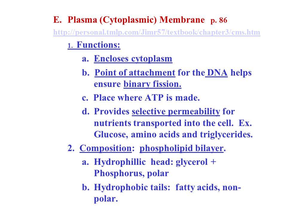 Plasma (Cytoplasmic) Membrane p. 86