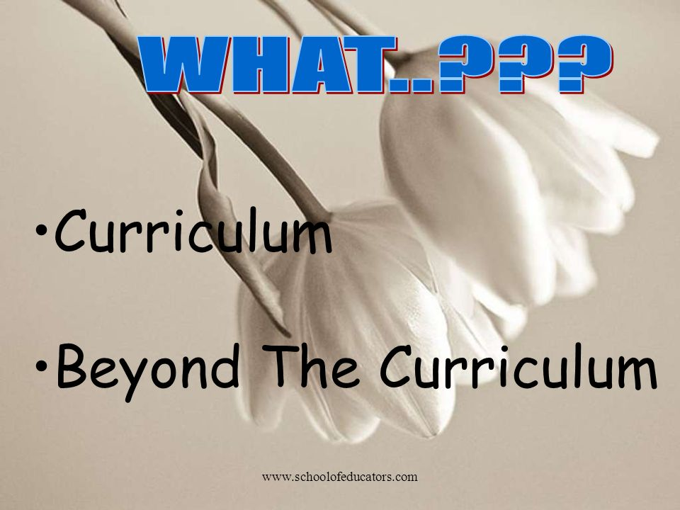 WHAT.. Curriculum Beyond The Curriculum www.schoolofeducators.com