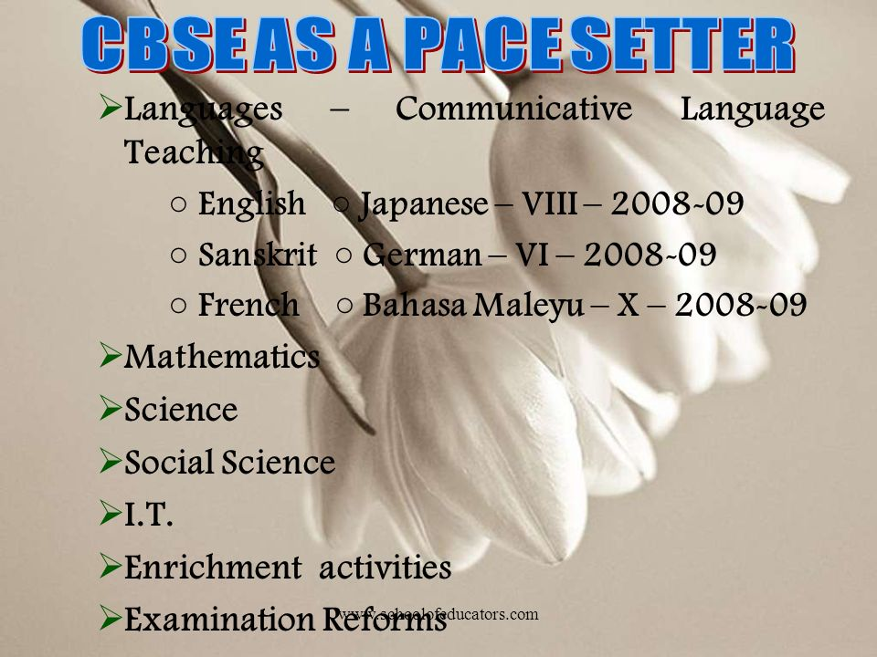 CBSE AS A PACE SETTER Languages – Communicative Language Teaching