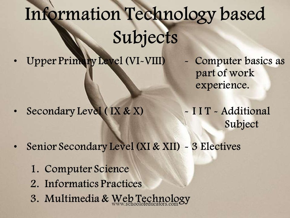 Information Technology based Subjects