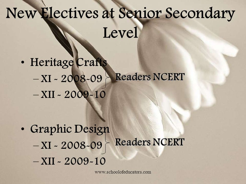 New Electives at Senior Secondary Level