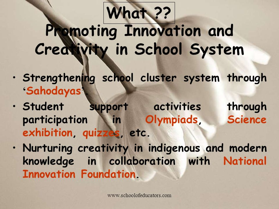 Promoting Innovation and Creativity in School System