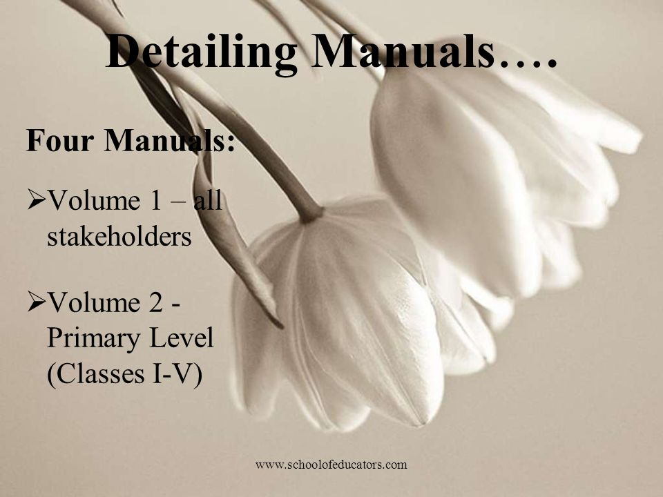 Detailing Manuals…. Four Manuals: Volume 1 – all stakeholders