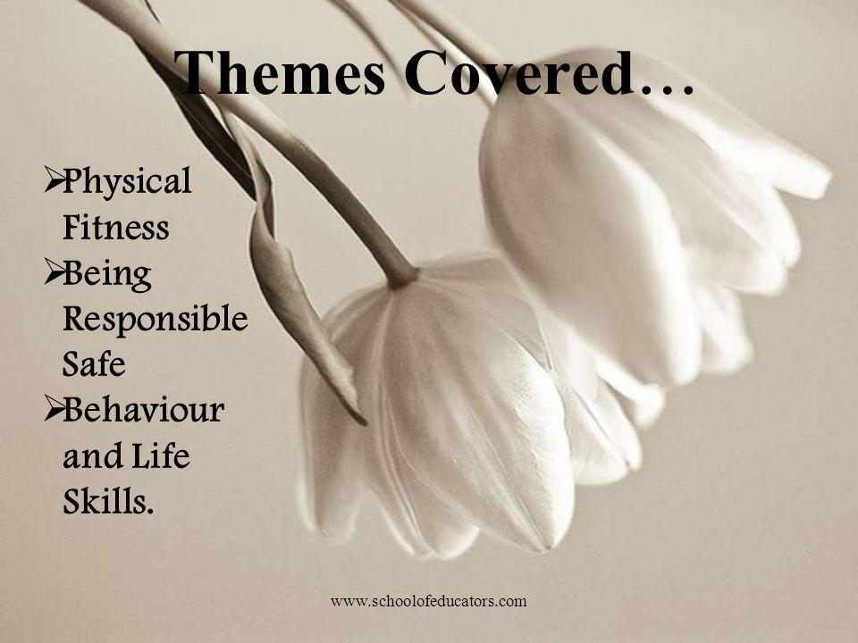 Themes Covered… Physical Fitness Being Responsible Safe