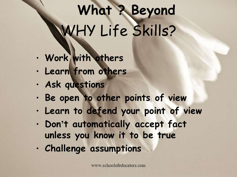 WHY Life Skills What Beyond Work with others Learn from others