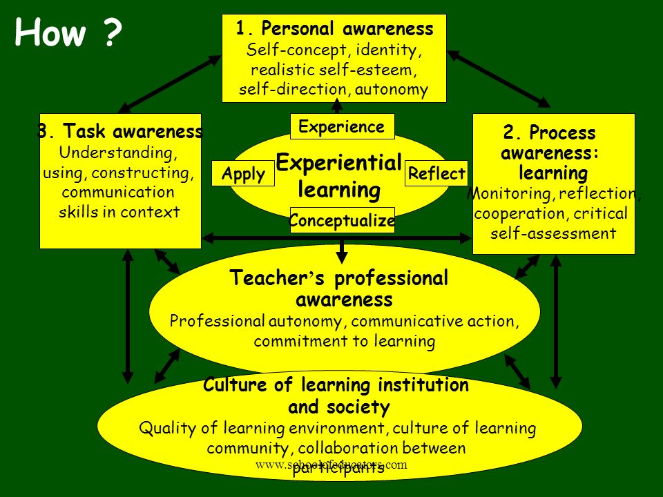 Experiential learning Culture of learning institution and society