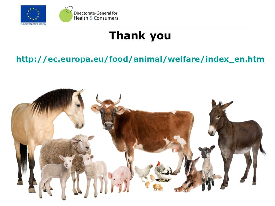 Thank you http://ec.europa.eu/food/animal/welfare/index_en.htm 14