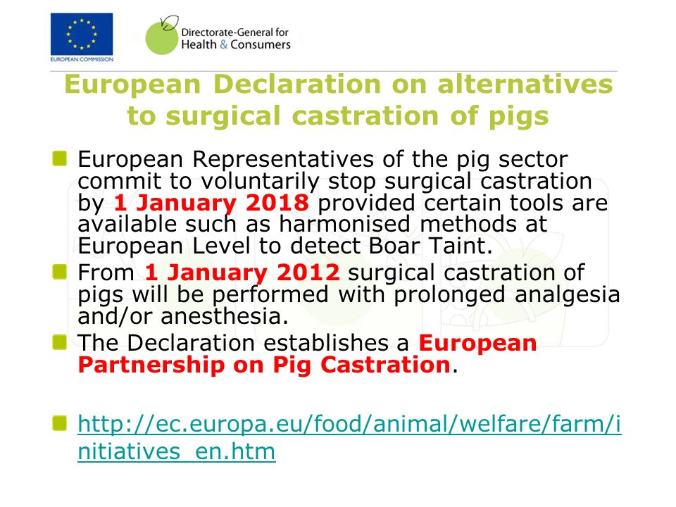 European Declaration on alternatives to surgical castration of pigs