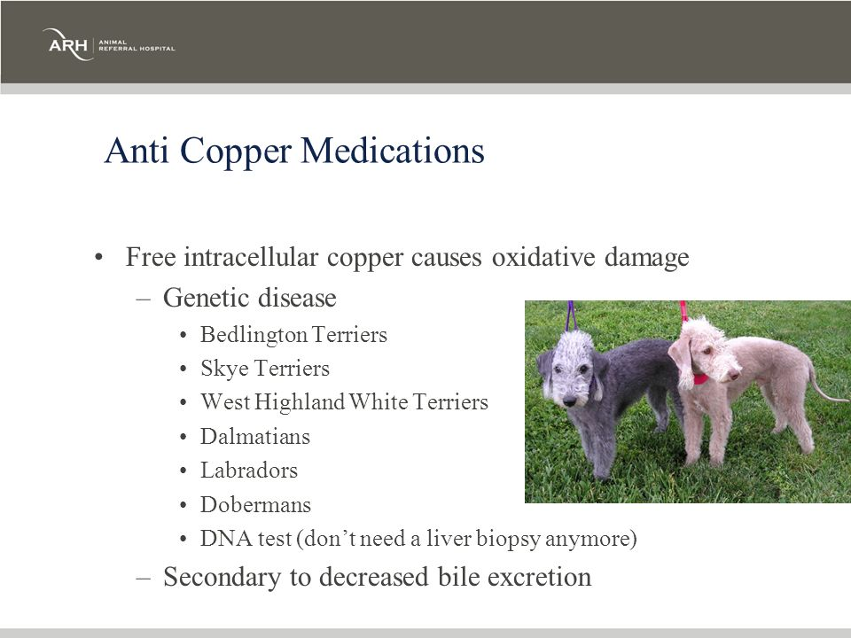 Anti Copper Medications
