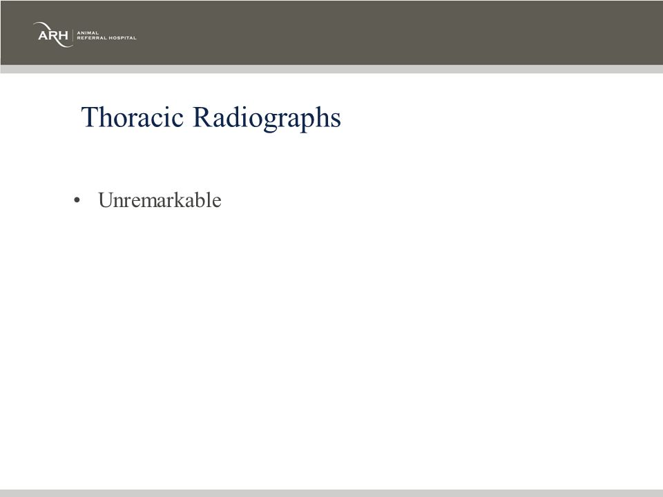 Thoracic Radiographs Unremarkable