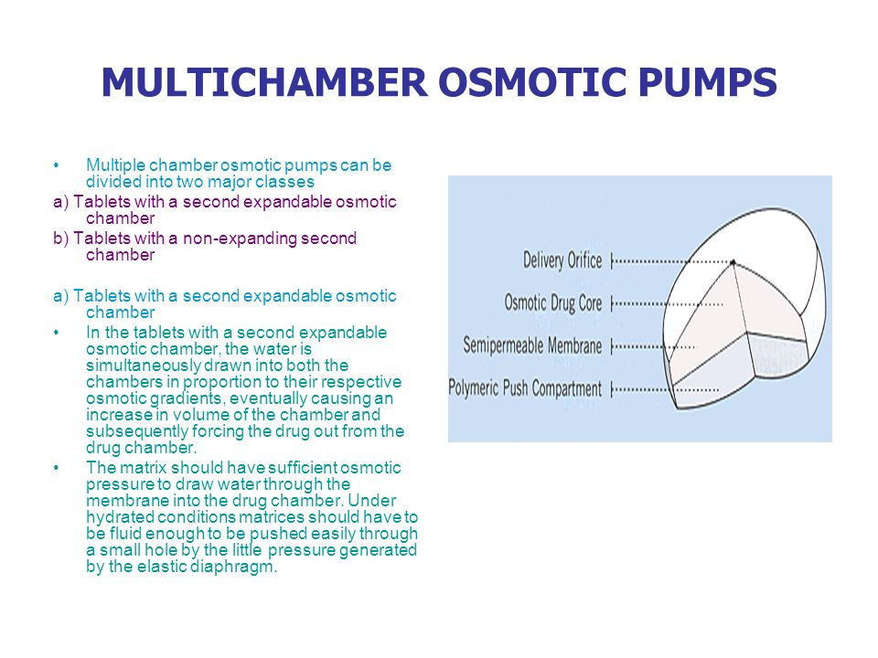 MULTICHAMBER OSMOTIC PUMPS