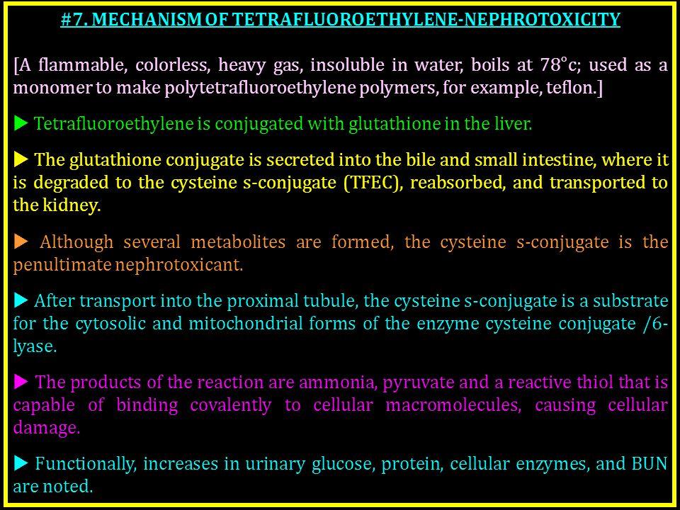 #7. MECHANISM OF TETRAFLUOROETHYLENE-NEPHROTOXICITY