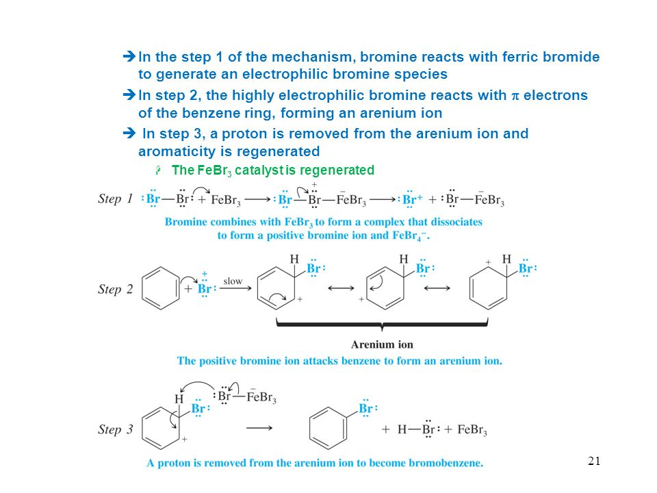 In the step 1 of the mechanism, bromine reacts with ferric bromide to generate an electrophilic bromine species