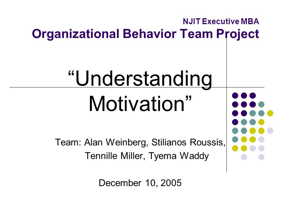 NJIT Executive MBA Organizational Behavior Team Project