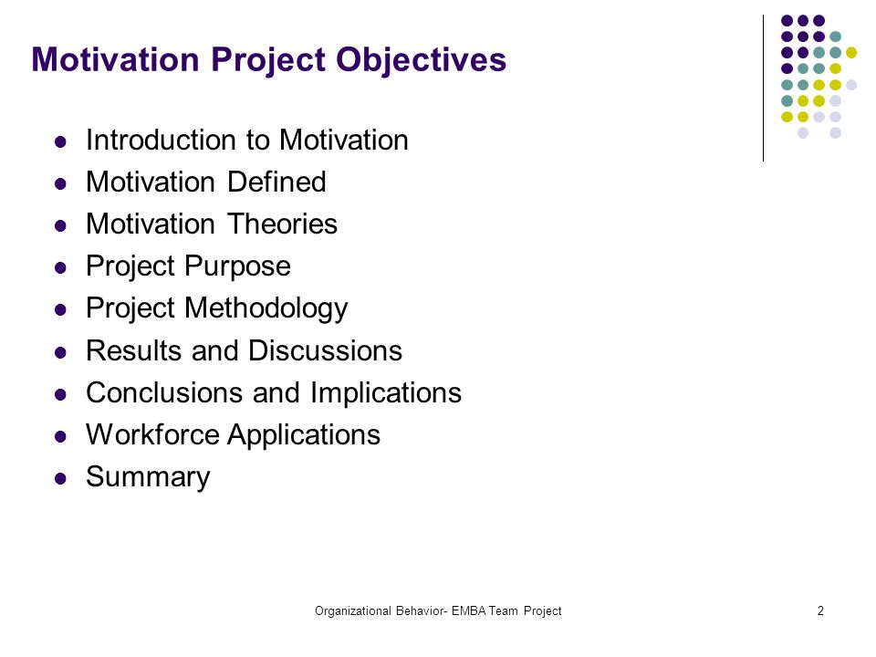 Motivation Project Objectives