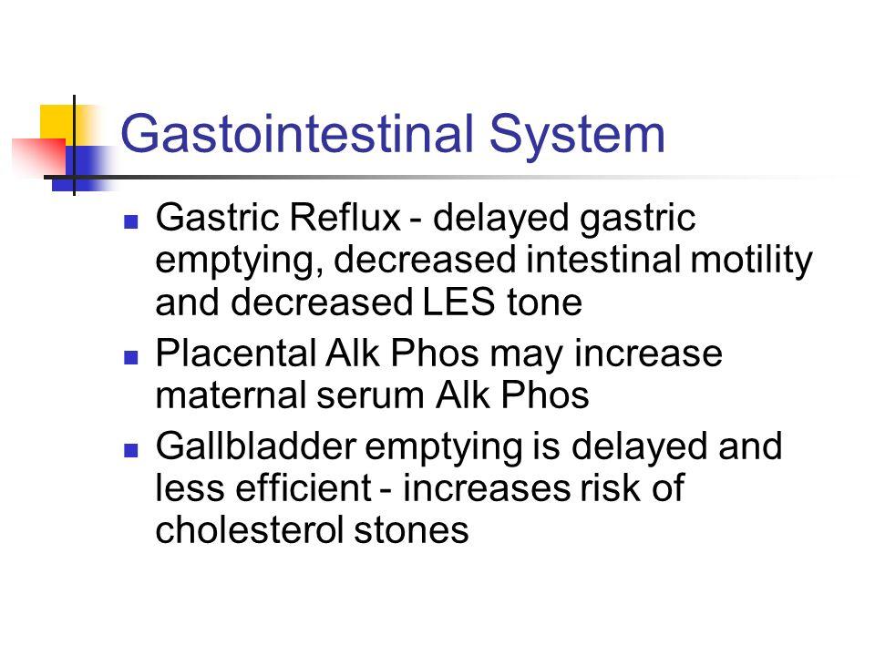 Gastointestinal System