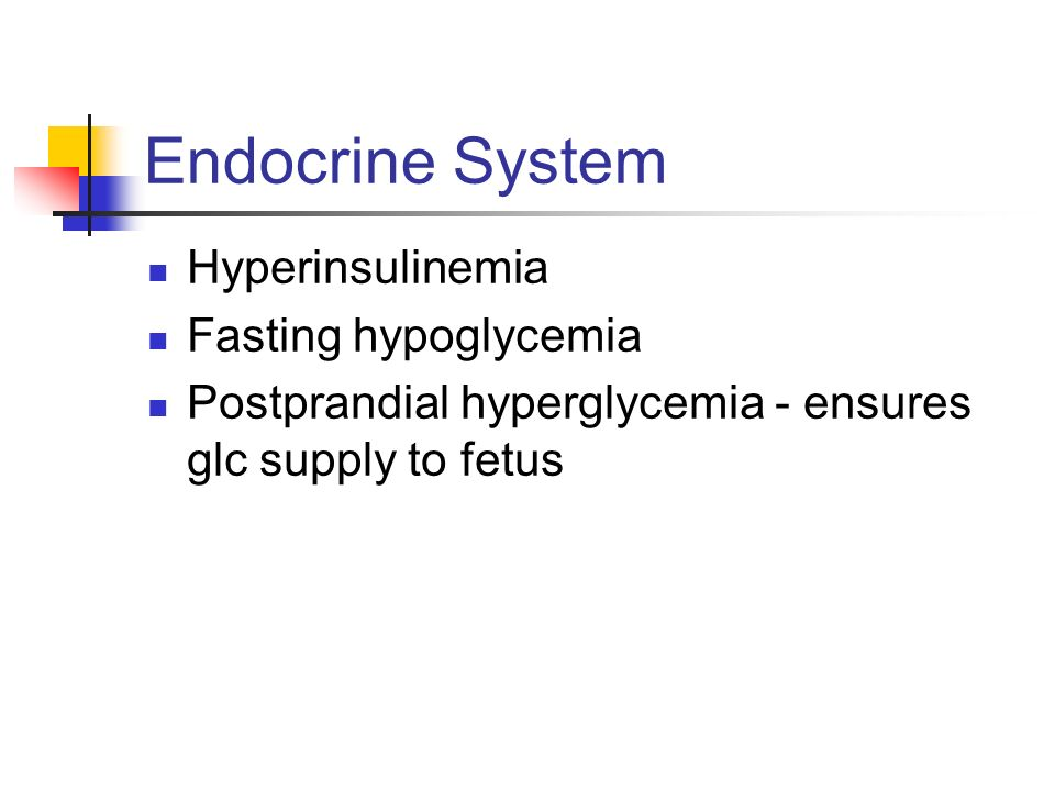 Endocrine System Hyperinsulinemia Fasting hypoglycemia