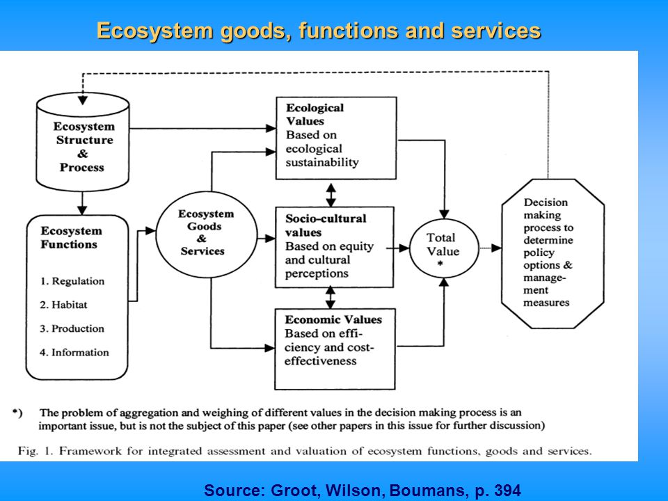 Ecosystem goods, functions and services