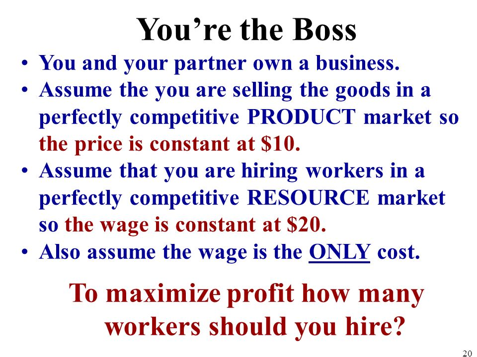 To maximize profit how many workers should you hire