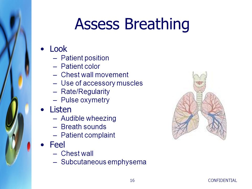Assess Breathing Look Listen Feel Patient position Patient color