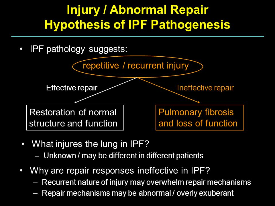 Injury / Abnormal Repair Hypothesis of IPF Pathogenesis