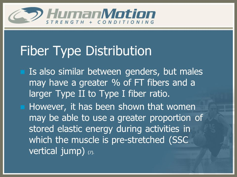Fiber Type Distribution