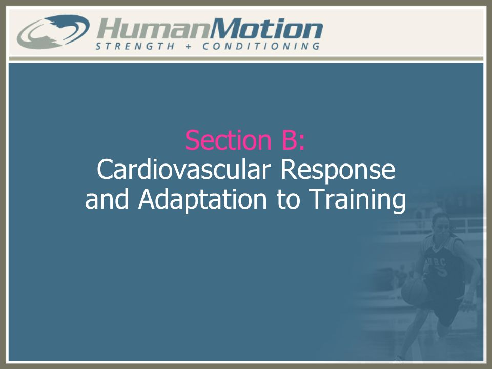 Section B: Cardiovascular Response and Adaptation to Training