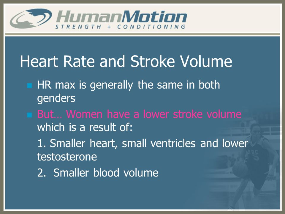 Heart Rate and Stroke Volume