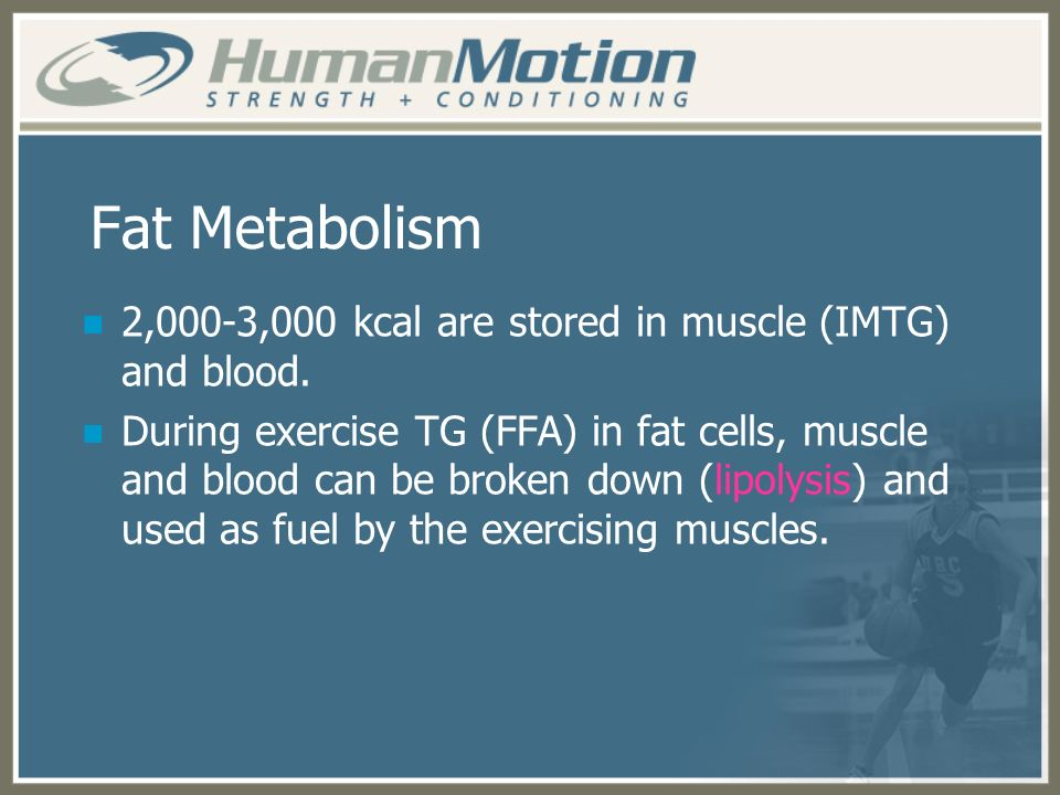 Fat Metabolism 2,000-3,000 kcal are stored in muscle (IMTG) and blood.