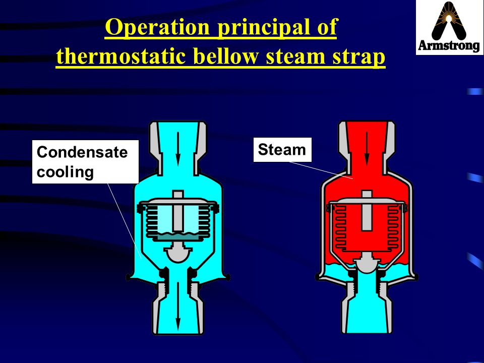 Operation principal of thermostatic bellow steam strap