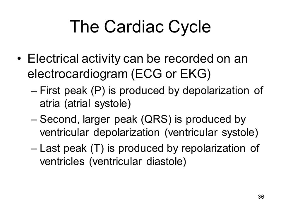 The Cardiac Cycle Electrical activity can be recorded on an electrocardiogram (ECG or EKG)