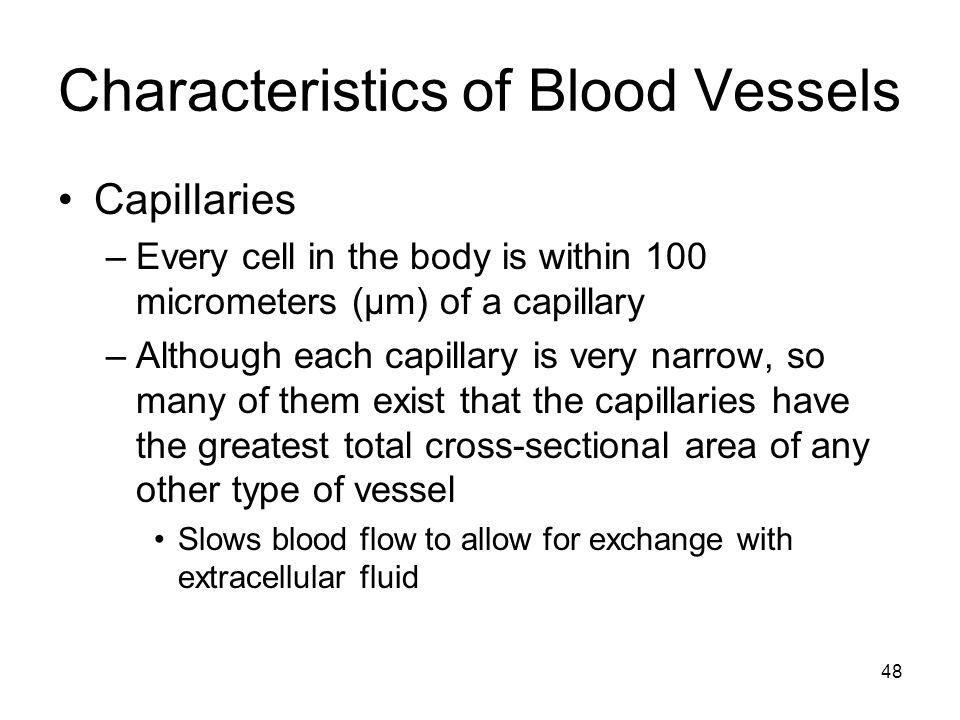 Characteristics of Blood Vessels