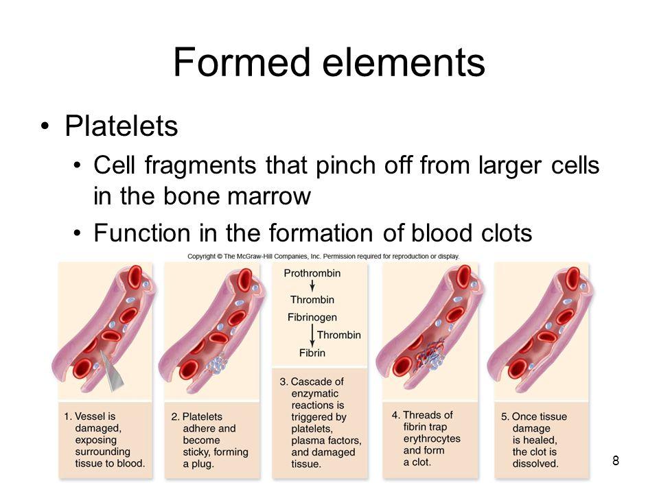 Formed elements Platelets