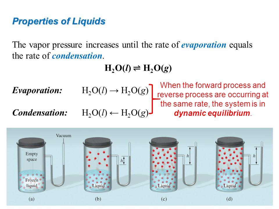Evaporation: H2O(l) → H2O(g) Condensation: H2O(l) ← H2O(g)
