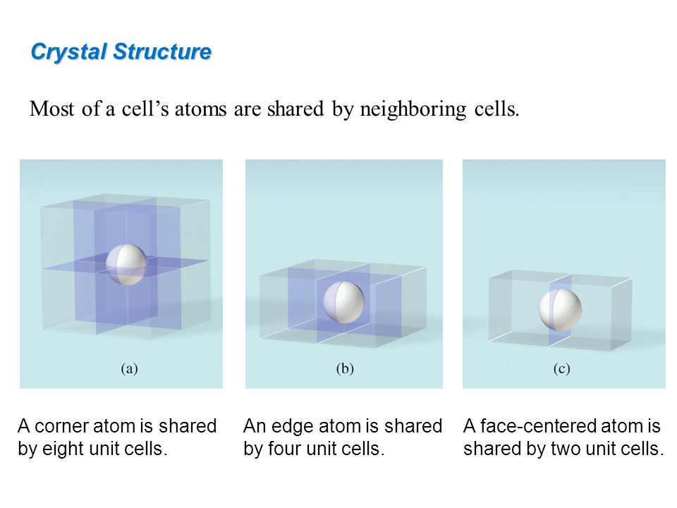 Most of a cell's atoms are shared by neighboring cells.