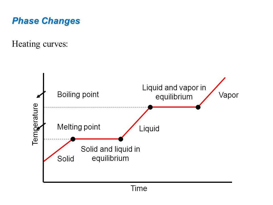 Phase Changes Heating curves: Liquid and vapor in equilibrium