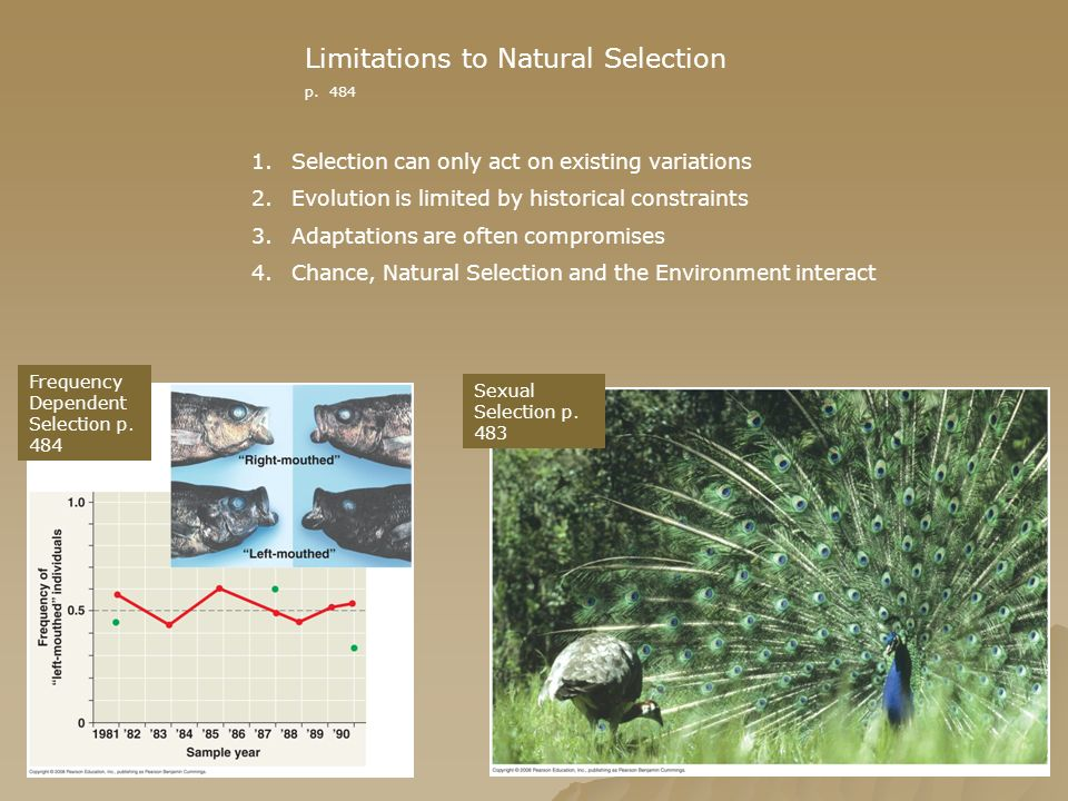 Limitations to Natural Selection