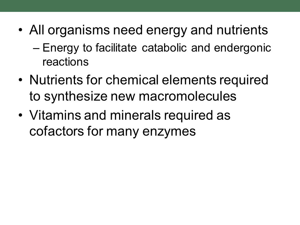 All organisms need energy and nutrients